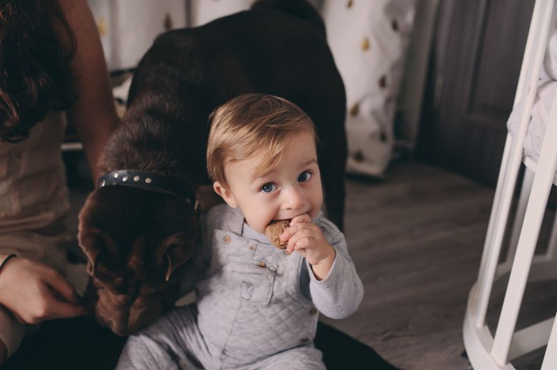 Zvířátko a dětská imunita