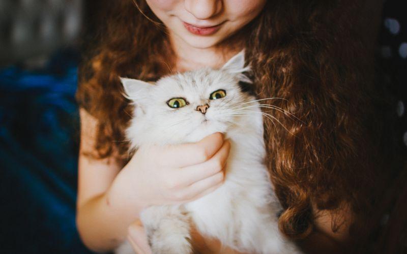 Kočka a dívka