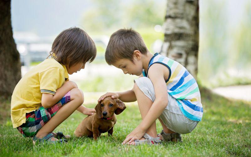 Povaha milovník dětí